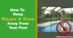 9 Ways To Keep Wasps and Bees Away From Your Swimming Pool