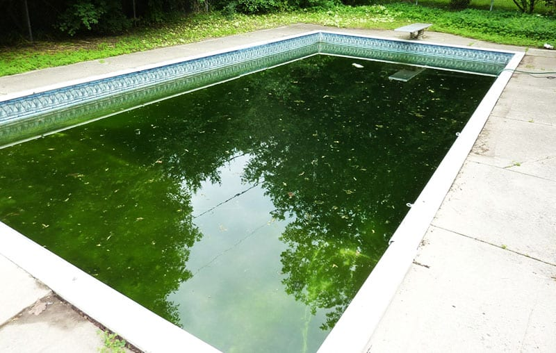 fix a green pool in 5 easy steps get rid of pool algae. Black Bedroom Furniture Sets. Home Design Ideas