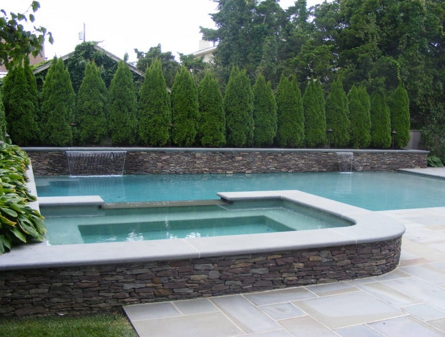 privacy plants and hedges for pool landscaping